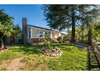 Northridge Single Family Home For Sale: 8816 Chimineas