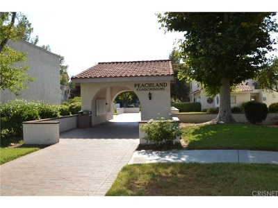 Newhall Condo/Townhouse For Sale: 25003 Peachland Avenue #115