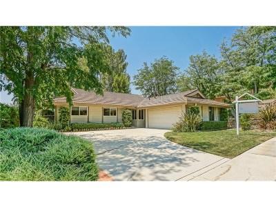 Saugus Single Family Home For Sale: 22110 Empino Lane