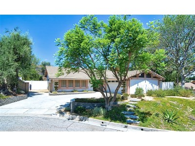 Woodland Hills Single Family Home For Sale: 4419 Da Vinci Avenue