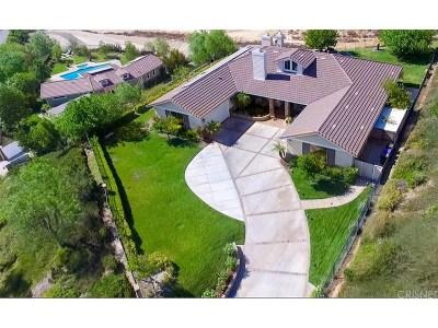 Saugus Single Family Home For Sale: 23097 Lowridge Place