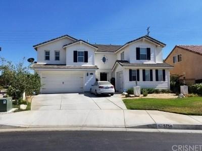 Lancaster Single Family Home For Sale: 5750 Balmont Street