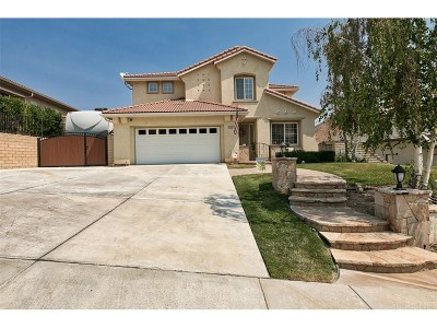 Saugus Single Family Home For Sale: 21125 Cross Creek Drive