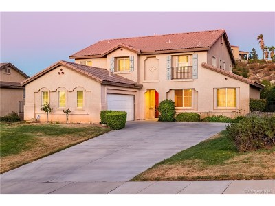 Palmdale Single Family Home For Sale: 40332 Nido Court