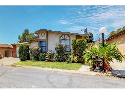 Castaic Single Family Home For Sale: 31927 Quartz Lane