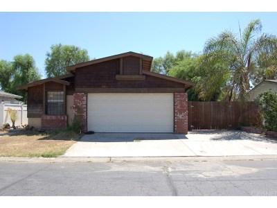Castaic Single Family Home For Sale: 27544 Onyx Lane