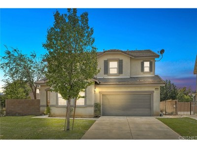 Lancaster Single Family Home For Sale: 3014 Peaceful Way