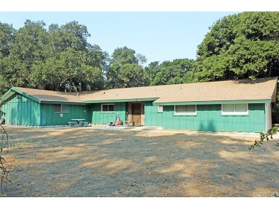 Canyon Country Single Family Home For Sale: 16207 Valley Ranch Road
