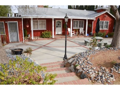 Castaic Single Family Home For Sale: 31540 Cherry Drive