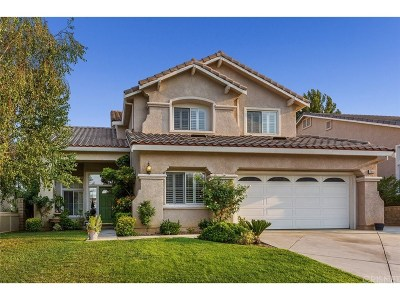 Saugus Single Family Home For Sale: 21648 Canyon Heights Circle