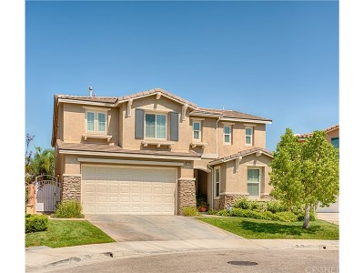 Canyon Country Single Family Home For Sale: 17519 Sarvistree Court