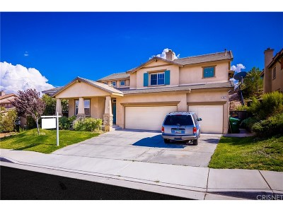Palmdale Single Family Home For Sale: 802 Vandal Way