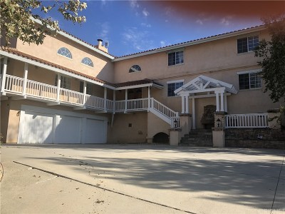 Calabasas Single Family Home For Sale: 1640 Cold Canyon Road