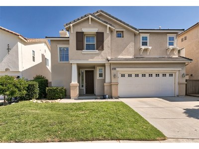 Canyon Country Single Family Home For Sale: 17507 Poplar Point Lane