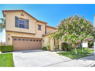 Castaic Single Family Home For Sale: 27968 Langley Place