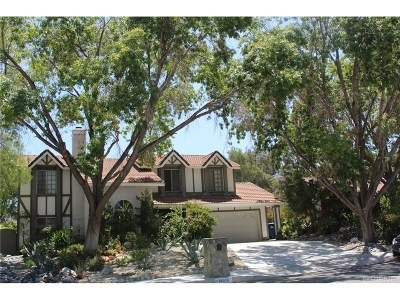 Canyon Country Single Family Home For Sale: 14818 Quezada Way