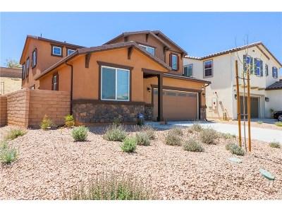 Palmdale Single Family Home For Sale: 2534 Mapleleaf