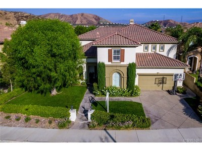 Saugus Single Family Home For Sale: 29128 Summer Oak Court