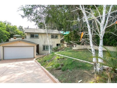 Newhall Single Family Home For Sale: 25042 Atwood Boulevard