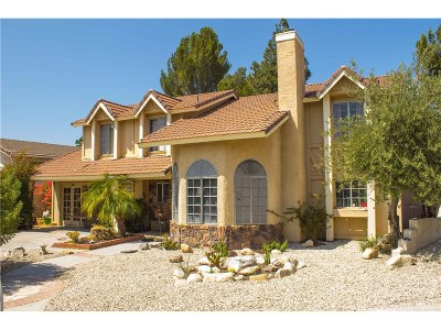 Canyon Country Single Family Home For Sale: 15403 Poppyseed Lane