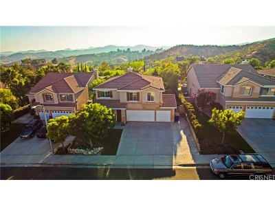 Castaic Single Family Home For Sale: 30519 Sorrento Place