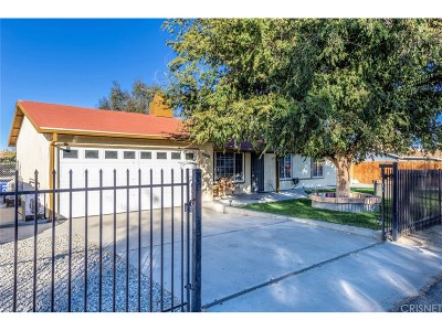 Palmdale Single Family Home For Sale: 40113 178th Street East