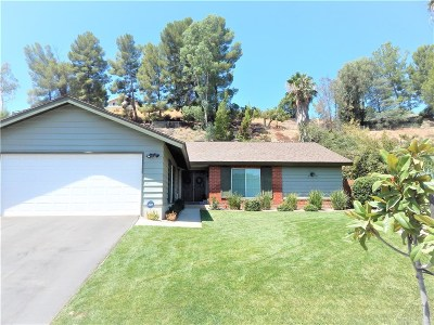 Saugus Single Family Home For Sale: 22147 Canones Circle