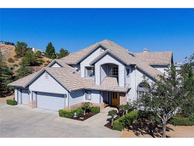 Palmdale Single Family Home For Sale: 307 Sugar Loaf Drive
