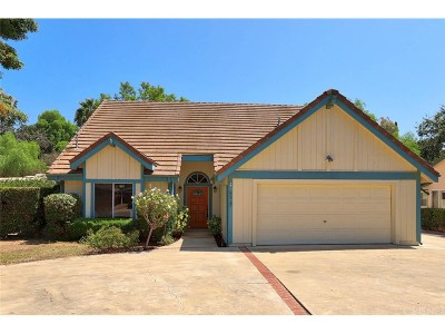 Thousand Oaks Single Family Home For Sale: 624 Paige Lane