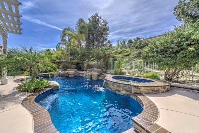 Stevenson Ranch Single Family Home For Sale: 26061 Ohara Lane