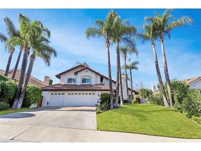 Single Family Home For Sale: 24741 Via Pradera