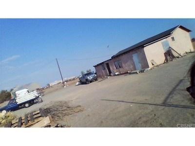 Adelanto Single Family Home For Sale: 6731 Saxon Road