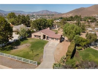 Acton Single Family Home For Sale: 32835 Chantada Avenue