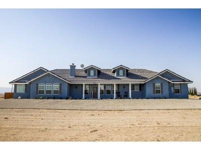 Rosamond Single Family Home For Sale: 7965 Dogwood Avenue