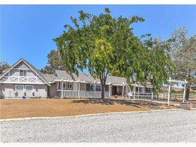 Agua Dulce Single Family Home For Sale: 9323 Hierba Road