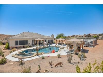 Acton Single Family Home For Sale: 33610 Desert Road