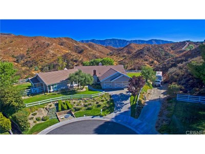 Canyon Country Single Family Home For Sale: 26841 Chuckwagon Place