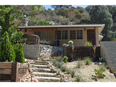 Lake Hughes Single Family Home For Sale: 17641 Lone Pine Trails
