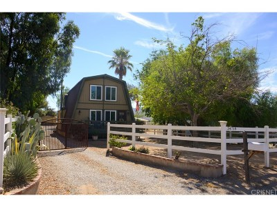 Agua Dulce Single Family Home For Sale: 34718 Agua Dulce Canyon Road