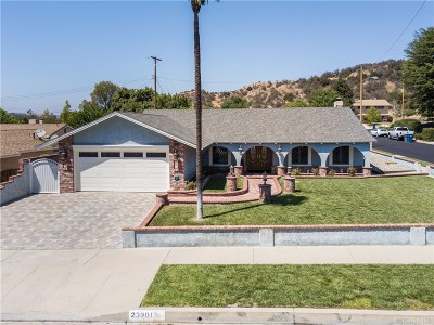 Newhall Single Family Home For Sale: 23901 Canerwell Street