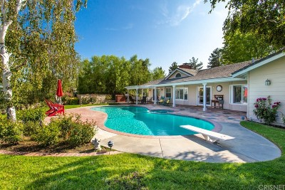 Castaic Single Family Home For Sale: 30560 Remington Road