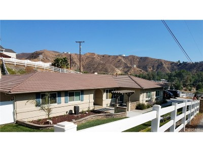 Saugus Single Family Home For Sale: 28809 Bouquet Canyon Road