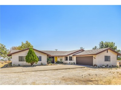 Castaic Single Family Home For Sale: 30809 Desert Shadow Road