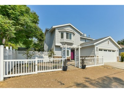 Castaic Single Family Home For Sale: 29051 Concorse Drive