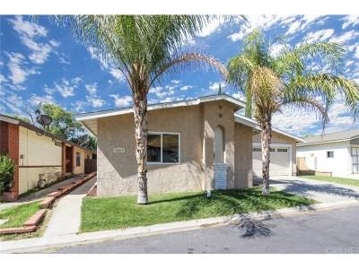 Castaic Single Family Home For Sale: 32015 Quartz Lane