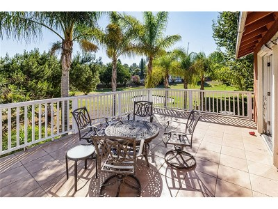 Agoura Hills Single Family Home For Sale: 5674 Slicers Circle