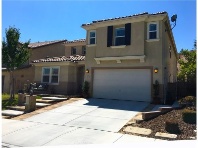 Saugus Single Family Home For Sale: 20516 Charlie Court