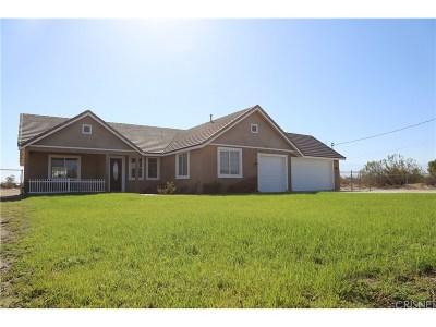 Littlerock Single Family Home For Sale: 37630 110th Street East