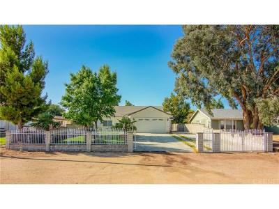 Quartz Hill Single Family Home For Sale: 4534 West Avenue M10