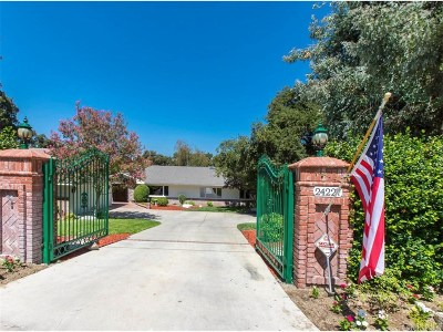 Newhall Single Family Home For Sale: 24227 Crosswinds Street